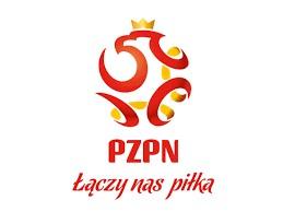 Piłka nożna, PZPN - logo.jpeg