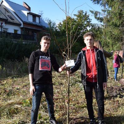 Galeria święto drzewa, Grupa Eko IV LO