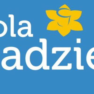 Galeria Pola Nadziei, wolontariat
